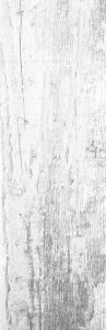 Hickory White Image