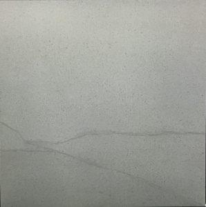 Iris Grey Image